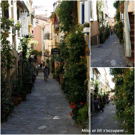 2011_05_Collioure_213