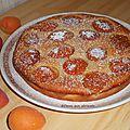 Gâteau aux abricots.