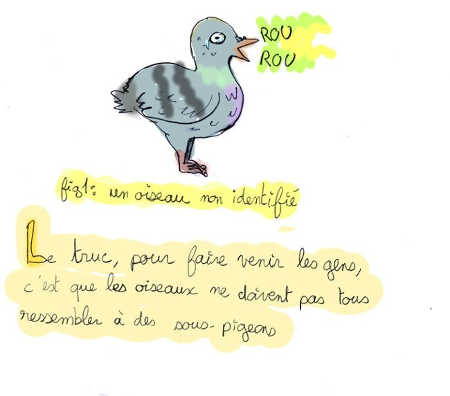 parc-oiseau01-1-2