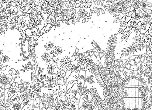 Coloriage adulte jardin secret - Mon jardin secret coloriage ...