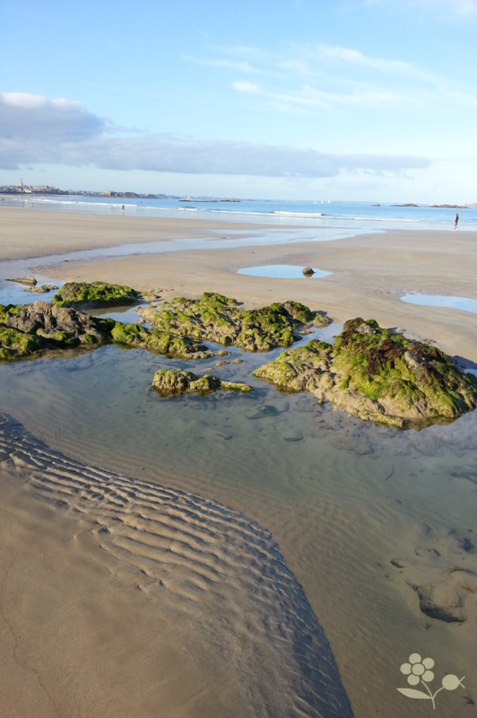 Saint Malo, plage à marée basse_3