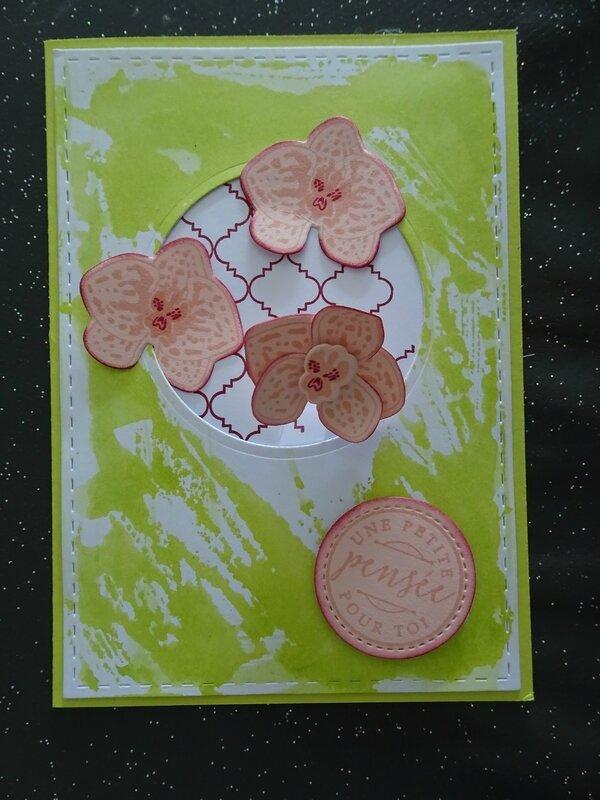 27a Carte patouille et orchidées