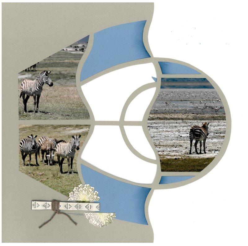 zebres 3