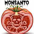 Monsanto jugé a la haye