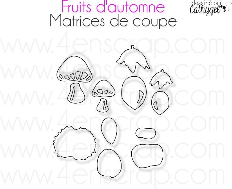 Image Fruits d'automne M80b