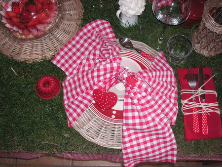 table_picnic_018