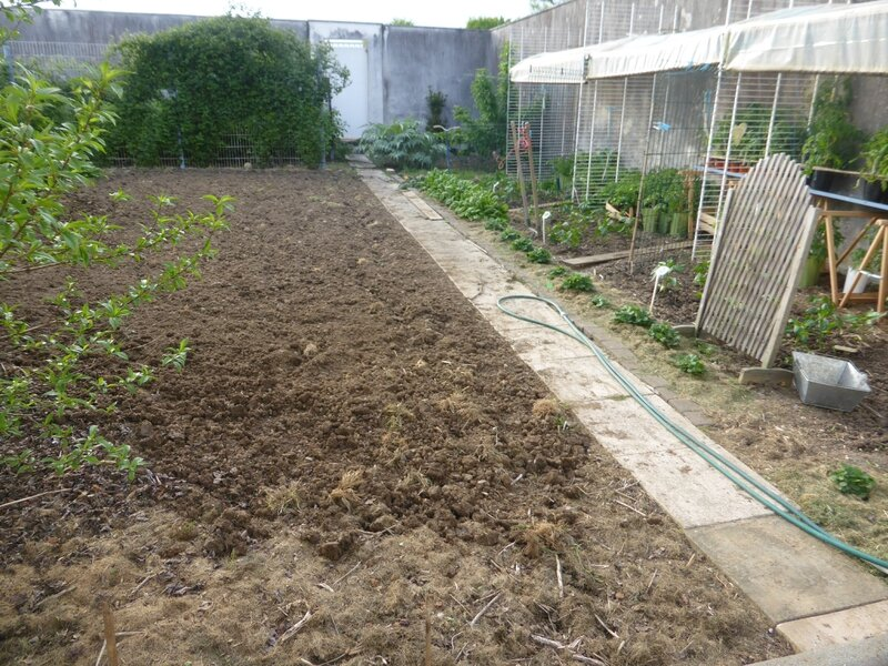 9-potager ouest (13)