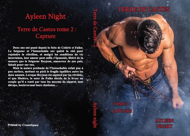 Terre de Castes tome 2 : capture (Ayleen Night)