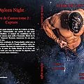 web Terre de Castes tome 2 capture (Ayleen Night)