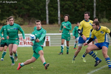 29IMG_1163T