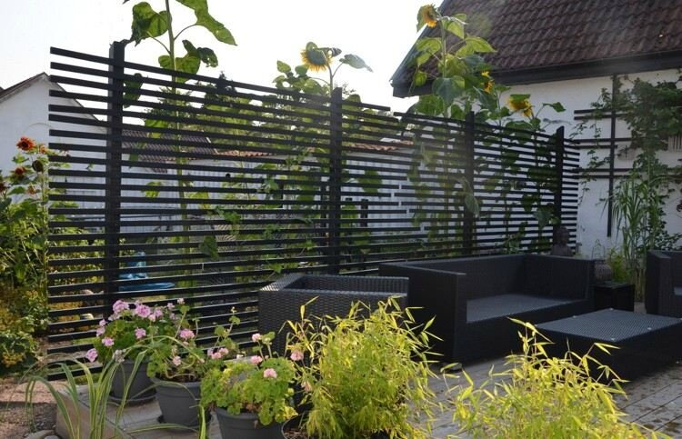 plantes-de-jardin-bambou-pot-géranium-rose-tournesols-e1460035953199