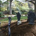 Halloween: nos costumes et nos décos !