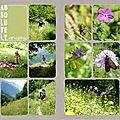 Alpes 2012 : suite