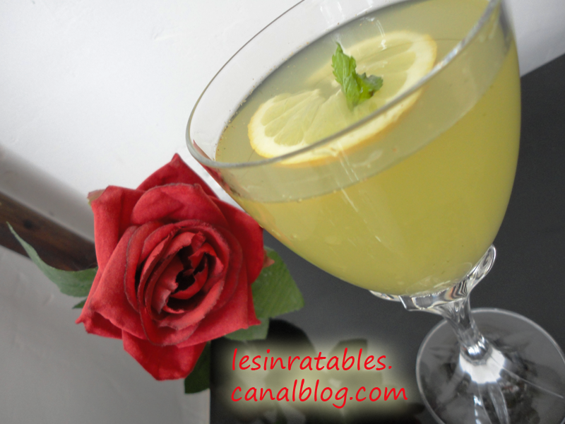 boisson d salt rante au citron menthe et gingembre les inratables de lili. Black Bedroom Furniture Sets. Home Design Ideas