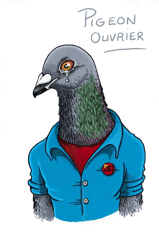 PIGEON ouvrier
