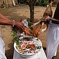 rituel gratuit de fin d'annee du medium marabout gratuit et serieux