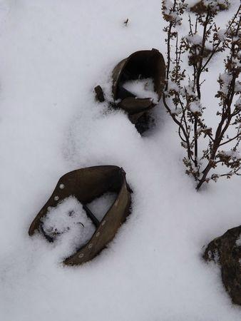 Dans la neige1 (2)