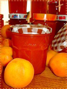 Confiture d'abricot (1)