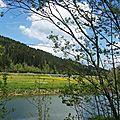 Les rives du Doubs