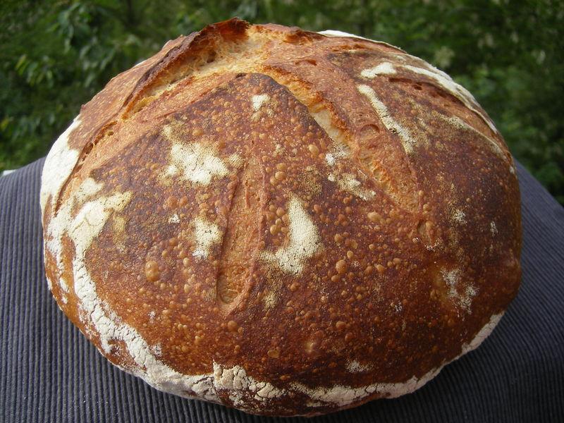 Recette de base pain au levain au levain - Comment faire griller du pain au four ...