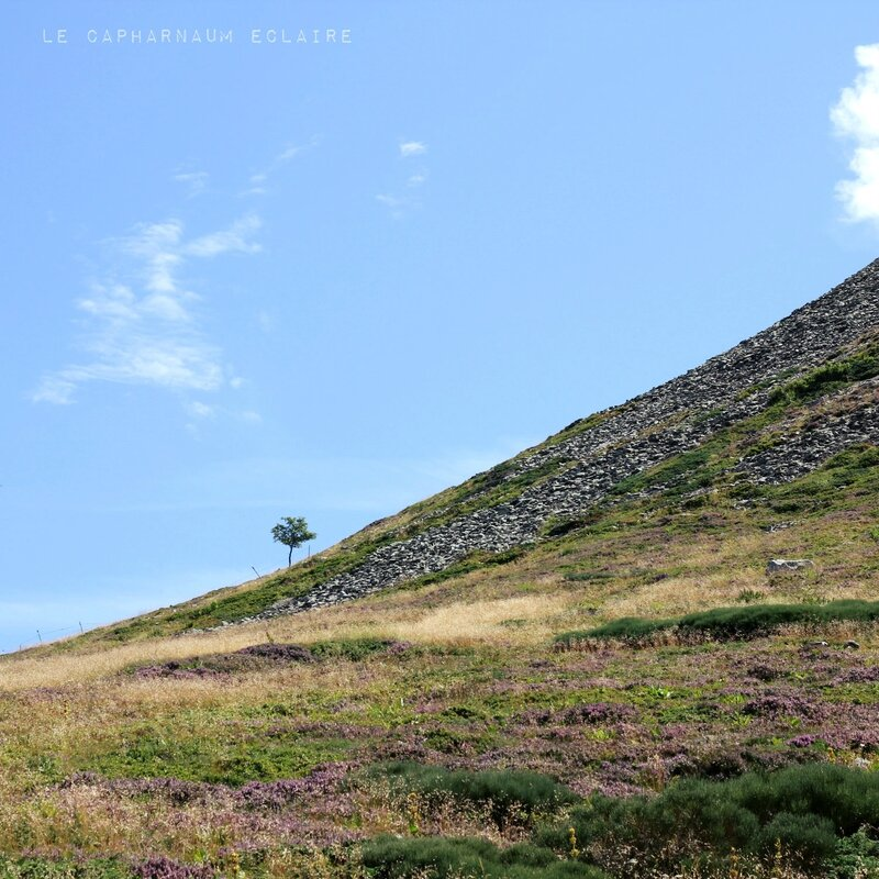 Puy Griou 3