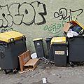 Le triste spectacle des poubelles de la rue du balcon