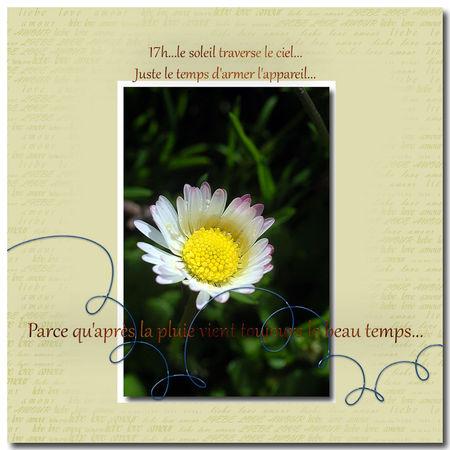apres_la_pluie