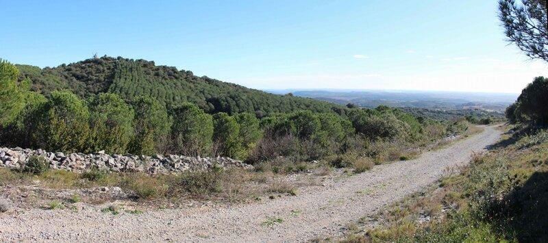 Panorama-60a