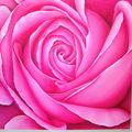rose rose 60 60 JPG (1)