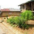 Laos, Luang Prabang à Vengviang 149
