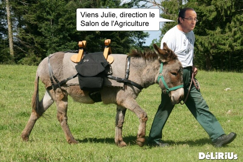 Hollande Salon Agricumture DéLiRiUs