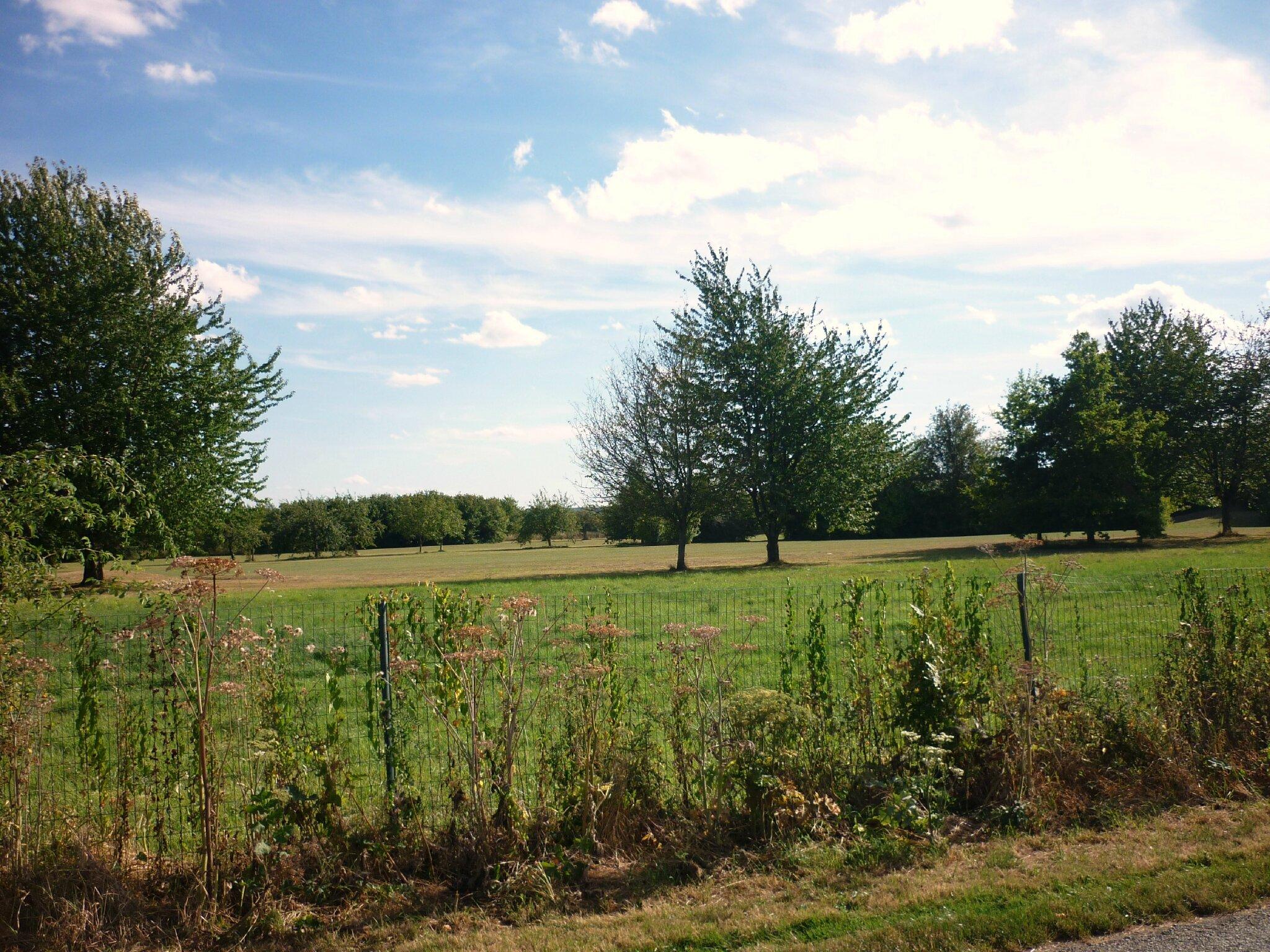 Jardin anglais for Brocante jardin anglais