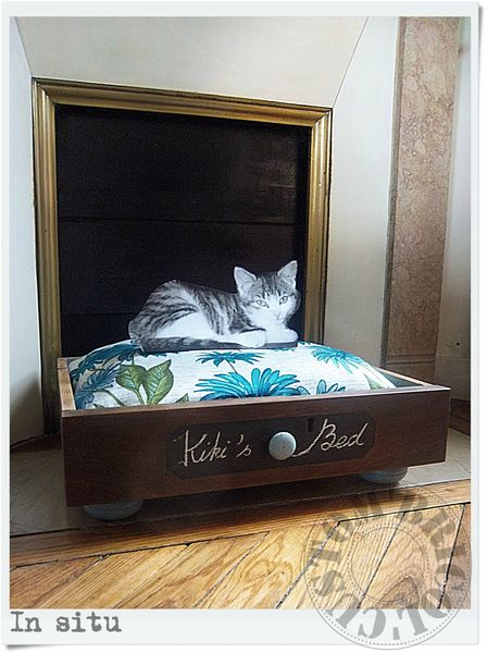Cat's bed - In situ