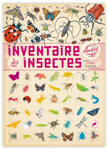 inventaire_des_insectes