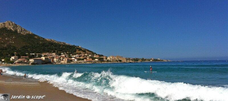 Le village de Algajola en Corse (Balagne)