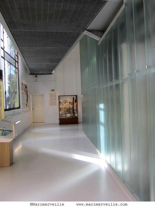 Galerie botanique paris -marimerveille