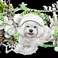 Cadre chien de noël