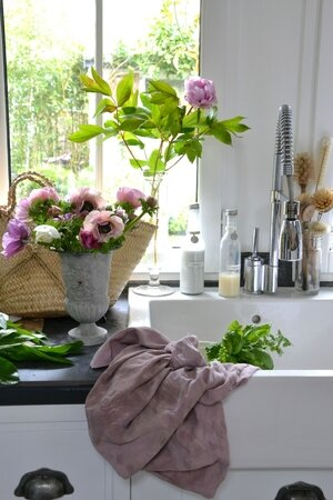 anemones kitchen