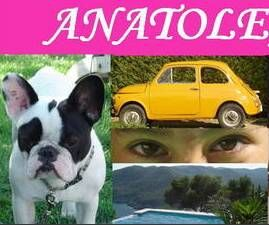Anatole