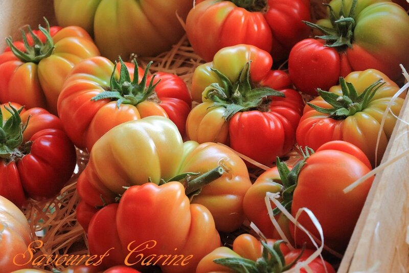 Magasin__Tomates_anciennes_