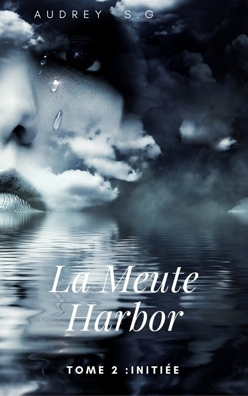 Couverture LMH Tome 2