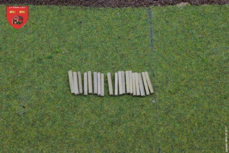 IMGP0238 cloture béton 10 10 17