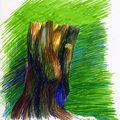 Etude de tronc d'arbre mort