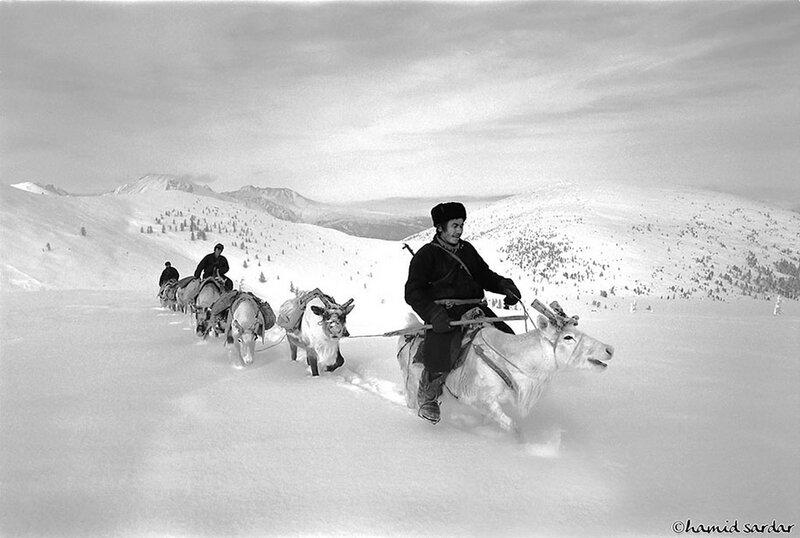 Hamid-Sardar-Afkhami-grainedephotographe-10
