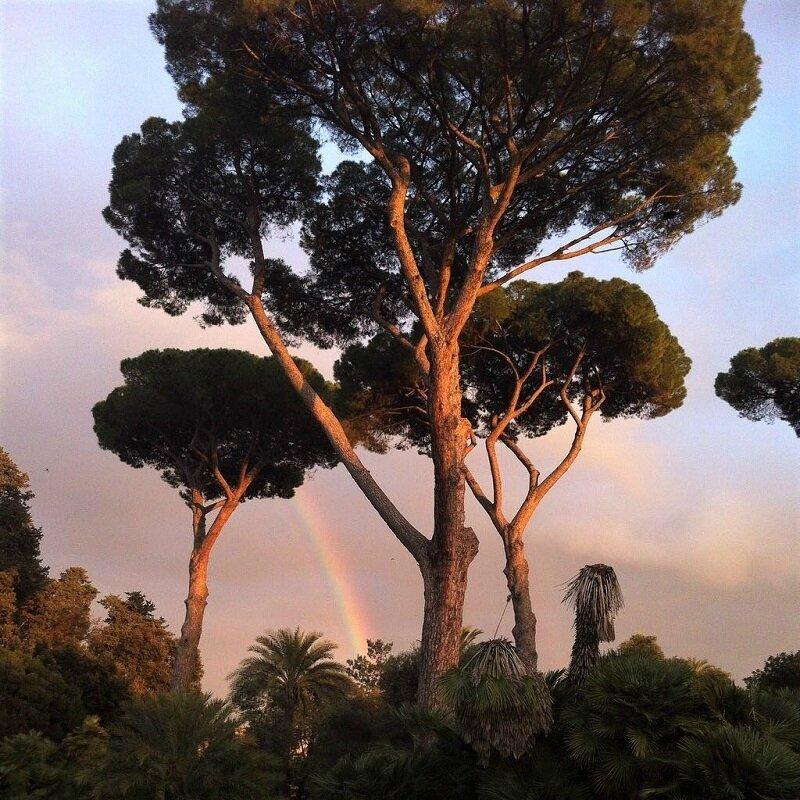 roma arc en ciel jardin orangers 02
