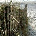 la torche barrieresur le sable