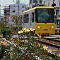 Toden 8800 (8810形 jaune -unique!)