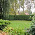 Jardin devant vu de la maison