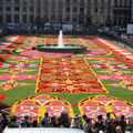 TAPIS DE FLEURS SUR LA GRAND-PLACE DE BRUXELLES /Belgique 