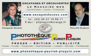 CARTE_de_VISITE_MAGAZINE_WEB